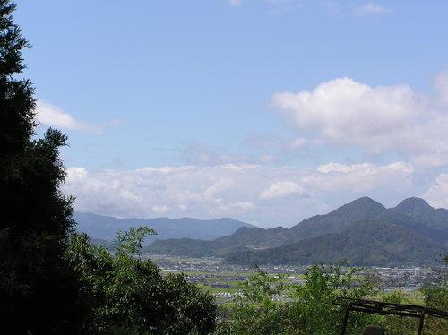 春~夏の画像: 田方平野